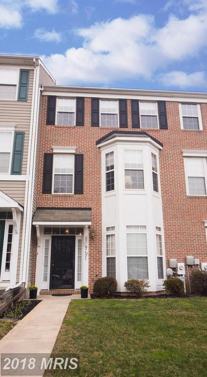 2623 Gray Ibis Court, Odenton, MD 21113 (#AA10183418) :: Lucido Agency