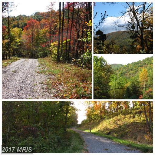 252-LOT #1 Doe Ridge Lane, Amherst, VA 24521 (#AH9883609) :: Pearson Smith Realty