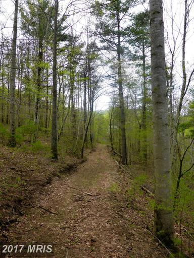 252-LOT #3 Doe Ridge Lane, Amherst, VA 24521 (#AH9883829) :: Pearson Smith Realty