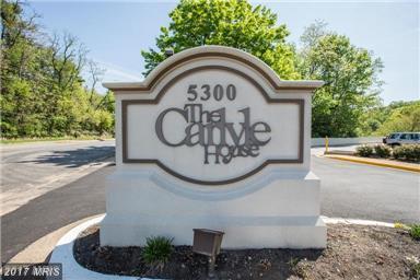 5300 Columbia Pike #312, Arlington, VA 22204 (#AR10039213) :: Pearson Smith Realty