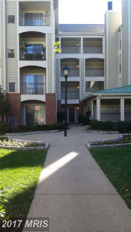 1100 Quaker Hill Drive #205, Alexandria, VA 22314 (#AX10093953) :: Pearson Smith Realty