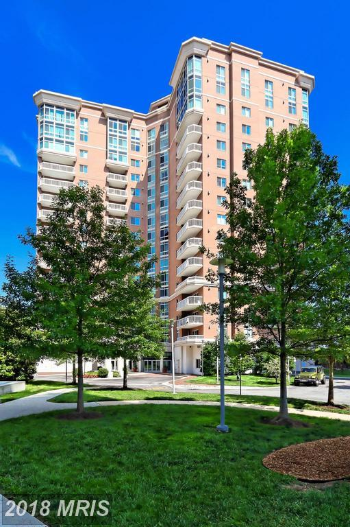 3101 Hampton Drive N #1206, Alexandria, VA 22302 (#AX10186864) :: RE/MAX Executives