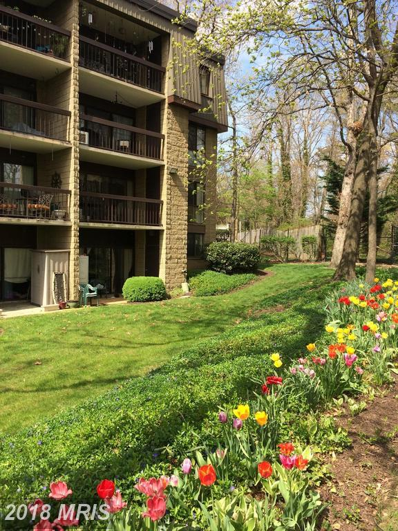 5120 Maris Avenue #100, Alexandria, VA 22304 (#AX10223636) :: The Withrow Group at Long & Foster