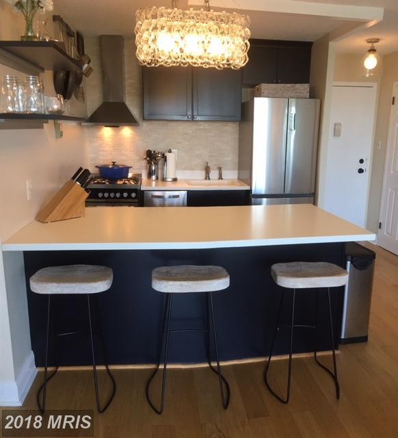 2500 Van Dorn Street #1520, Alexandria, VA 22302 (#AX10250695) :: Browning Homes Group