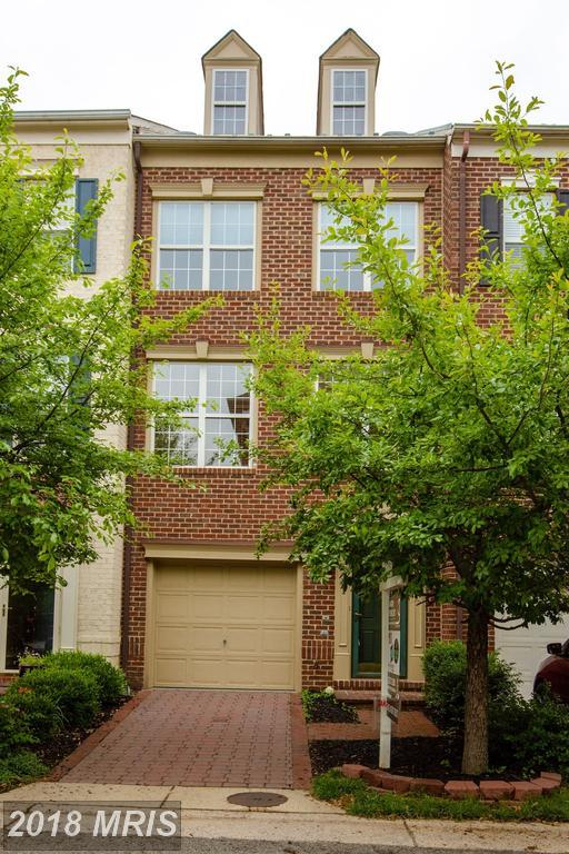 361 Livermore Lane, Alexandria, VA 22304 (#AX10267871) :: Advance Realty Bel Air, Inc