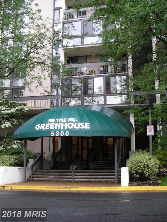 5300 Holmes Run Parkway #617, Alexandria, VA 22304 (#AX10305453) :: Green Tree Realty