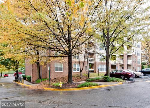 244 Reynolds Street #211, Alexandria, VA 22304 (#AX9997588) :: Pearson Smith Realty