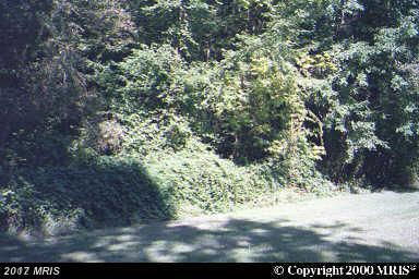 Browns Road, Essex, MD 21221 (#BC10053542) :: The Gus Anthony Team