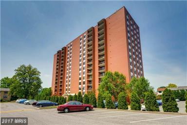 1 Smeton Place #305, Baltimore, MD 21204 (#BC10099588) :: Pearson Smith Realty