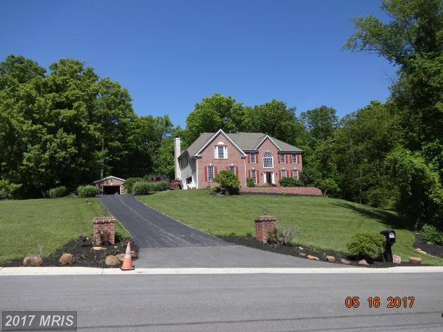 9319 Migan Road, Randallstown, MD 21133 (#BC9953843) :: LoCoMusings