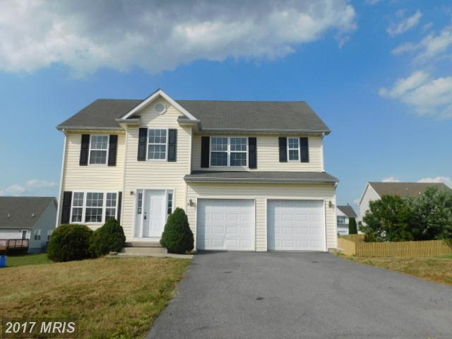 117 Huttons Vireo Drive, Martinsburg, WV 25403 (#BE10041943) :: Pearson Smith Realty