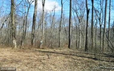 Darwin, Falling Waters, WV 25419 (#BE10098433) :: Pearson Smith Realty