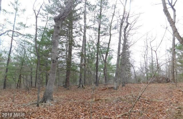 Lot 2 Hallows Way, Gerrardstown, WV 25420 (#BE10210477) :: Hill Crest Realty