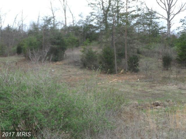 Lot B2 Conner Bowers, Hedgesville, WV 25427 (#BE9914211) :: LoCoMusings