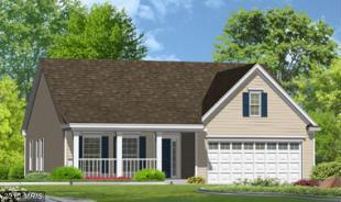 3 Stanfield Drive, Elkton, MD 21921 (#CC10135114) :: The Maryland Group of Long & Foster