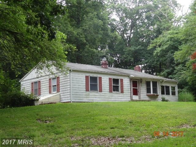 390 Washington Schoolhouse Road, Rising Sun, MD 21911 (#CC9996981) :: Pearson Smith Realty
