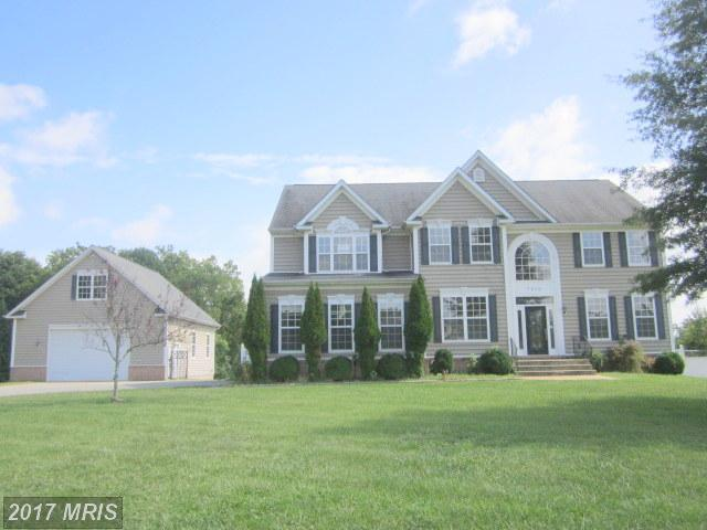 7970 Deepwater View Drive, Port Tobacco, MD 20677 (#CH10061296) :: Dart Homes