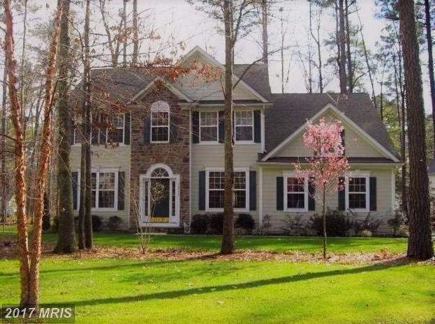 14735 Jennifer Court, Swan Point, MD 20645 (#CH10091938) :: Pearson Smith Realty
