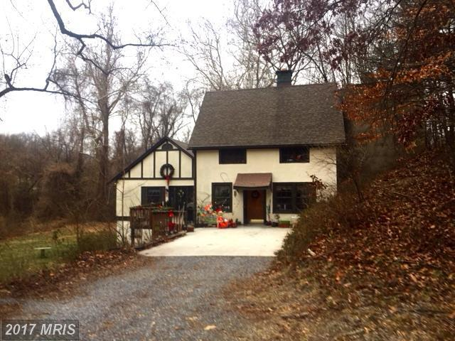 28 Valley Springs Lane, Bluemont, VA 20135 (#CL10121241) :: LoCoMusings