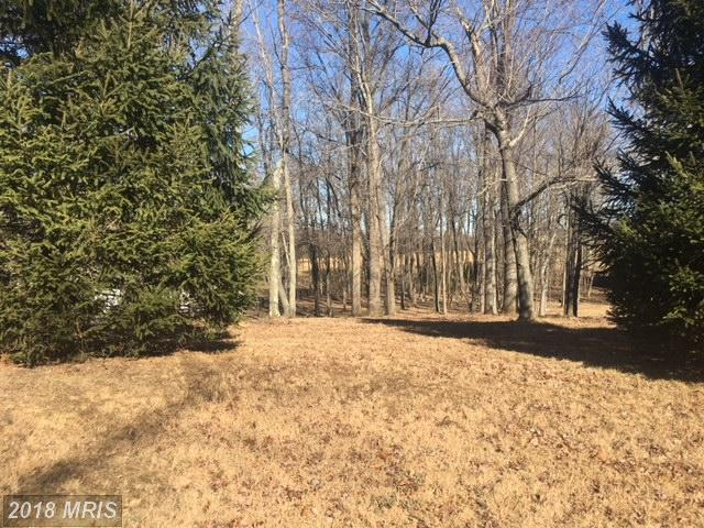 Pine Grove Rd, Bluemont, VA 20135 (#CL10135491) :: Pearson Smith Realty