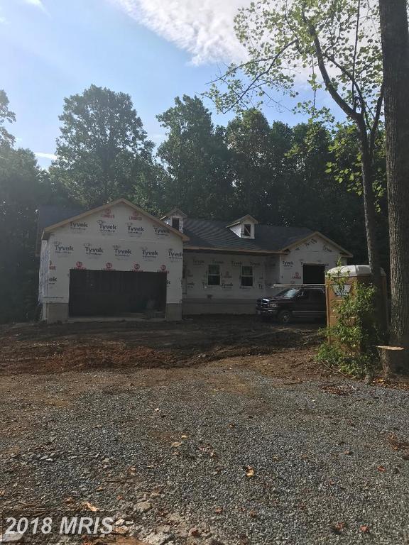 Blue Ridge Mountain Rd, Lot 4, Berryville, VA 22611 (#CL10300926) :: Dart Homes