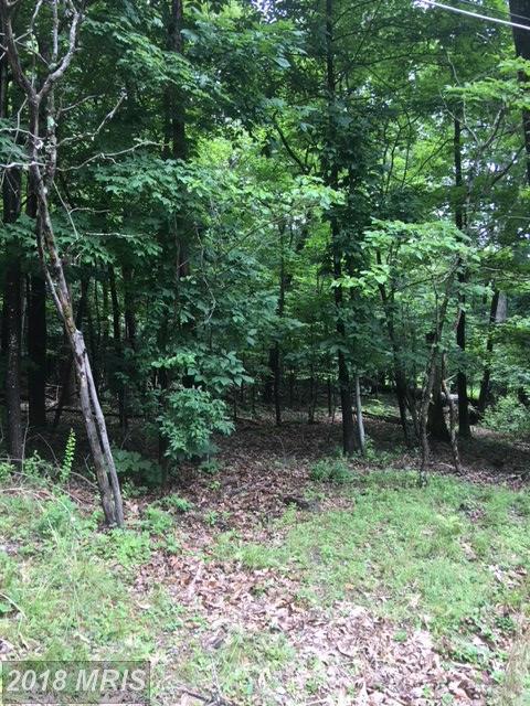 Cedar Lane, Bluemont, VA 20135 (#CL10305553) :: Keller Williams Pat Hiban Real Estate Group