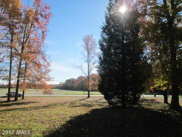 1.56 ACRES Henderson Road, Marydel, MD 21649 (#CM10116712) :: Pearson Smith Realty