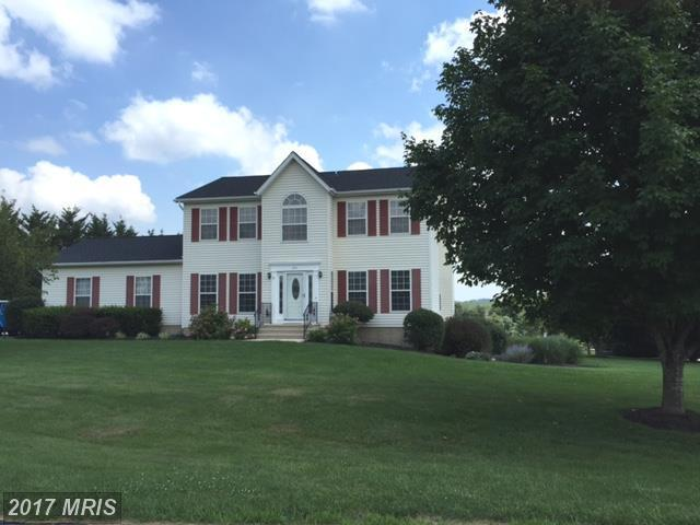 155 Wampee Court, Westminster, MD 21157 (#CR10061516) :: Pearson Smith Realty