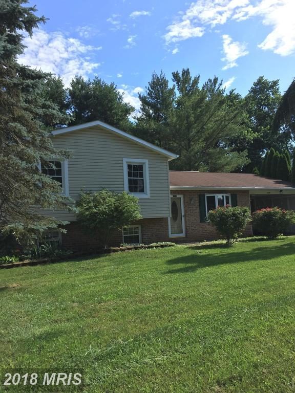 7246 Pommel Drive, Sykesville, MD 21784 (#CR10280466) :: Charis Realty Group
