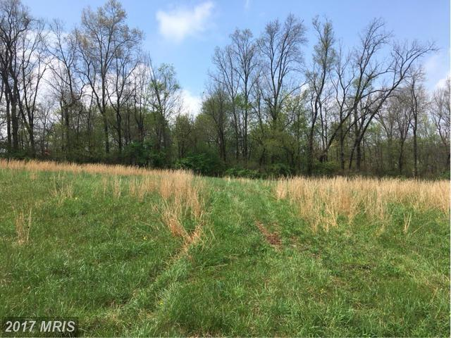 Bachmans Valley Rd S Of  Bachm, Westminster, MD 21157 (#CR9934209) :: Pearson Smith Realty