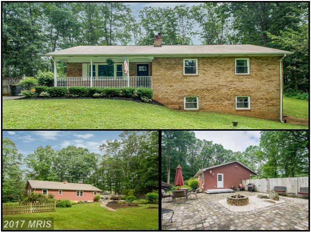 5412 Cabbage Spring Road, Mount Airy, MD 21771 (#CR9983593) :: Ultimate Selling Team