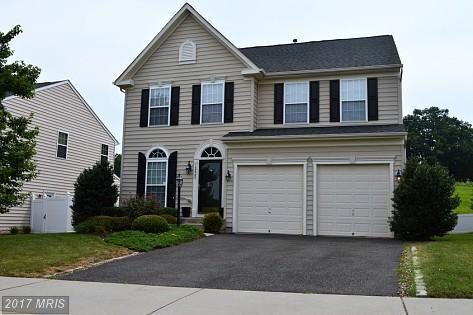 12045 Live Oak Drive, Culpeper, VA 22701 (#CU10017619) :: Pearson Smith Realty