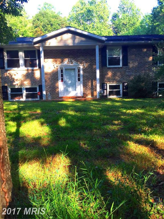 1345 Kristin Lane, Amissville, VA 20106 (#CU10059448) :: Pearson Smith Realty