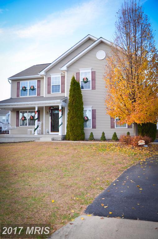 733 Holly Leaf Road, Culpeper, VA 22701 (#CU10114247) :: Pearson Smith Realty