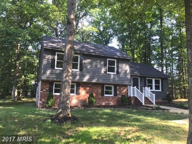 122 Land Or Drive, Ruther Glen, VA 22546 (#CV10010222) :: Green Tree Realty