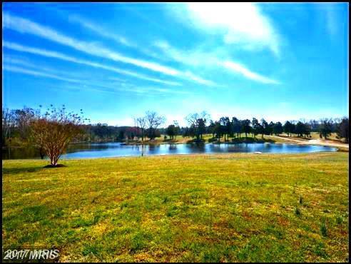 Macedonia Road, Woodford, VA 22580 (#CV10015742) :: Arlington Realty, Inc.