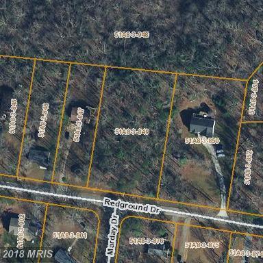 508 Redground Drive, Ruther Glen, VA 22546 (#CV10135878) :: Arlington Realty, Inc.