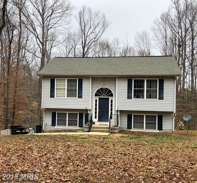 12 Johnson Drive, Ruther Glen, VA 22546 (#CV10155784) :: The Bob & Ronna Group