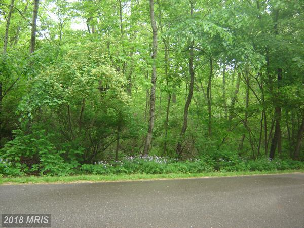 16366 Bull Church Road, Woodford, VA 22580 (#CV10181224) :: RE/MAX Cornerstone Realty