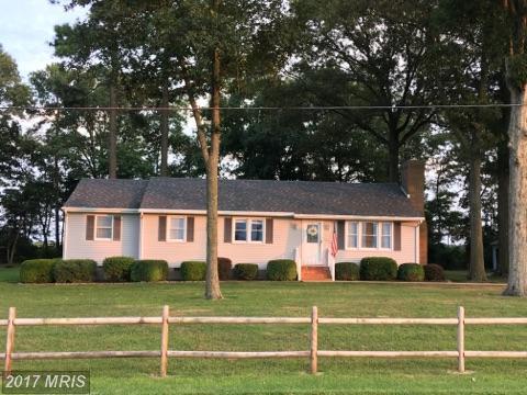 4411 Cabin Creek Hurlock Road, Hurlock, MD 21643 (#DO10024601) :: Pearson Smith Realty