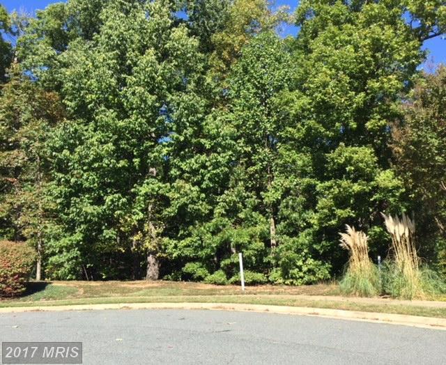 1013 Featherston Court, Fredericksburg, VA 22401 (#FB10084135) :: Pearson Smith Realty