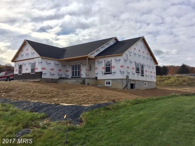 11325 Greenridge, Waynesboro, PA 17268 (#FL10099117) :: LoCoMusings