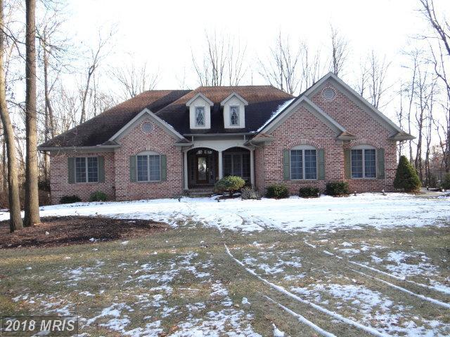 345 Lindman Drive, Chambersburg, PA 17202 (#FL10135391) :: Colgan Real Estate