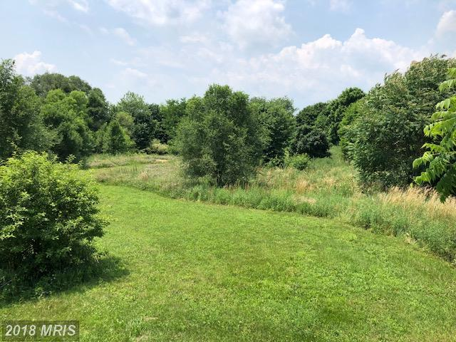 1 Lakeshore Dr., Chambersburg, PA 17202 (#FL10276519) :: The Foster Group