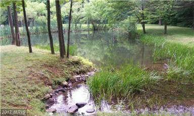 Mccalmont Road, Roxbury, PA 17251 (#FL9885060) :: Pearson Smith Realty
