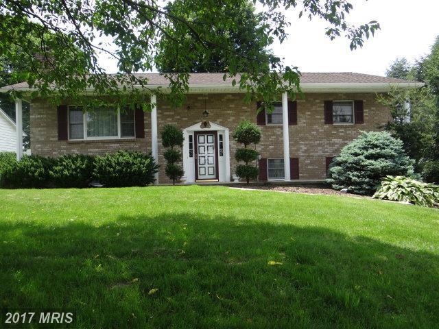 300 Cornertown Road, Chambersburg, PA 17201 (#FL9971658) :: LoCoMusings