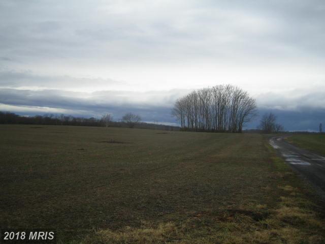 Elk Run Road, Catlett, VA 20119 (#FQ10160198) :: Jacobs & Co. Real Estate
