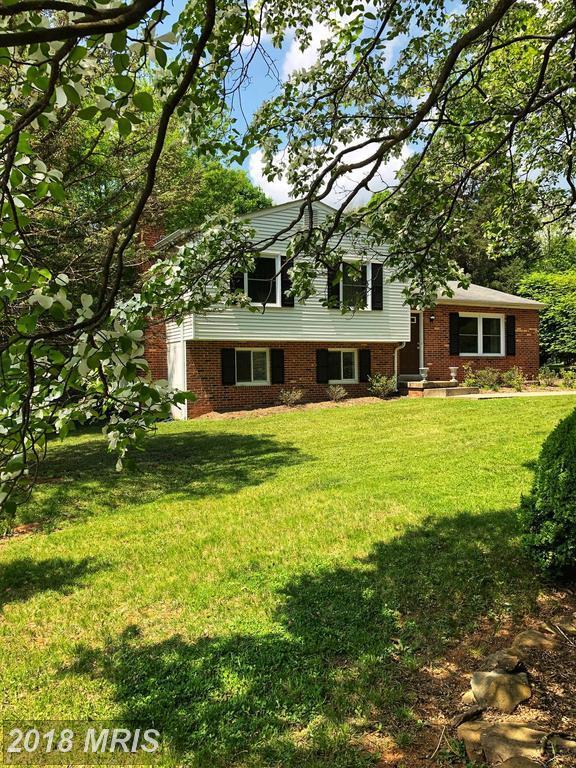 7006 Settlers Ridge Road, Warrenton, VA 20187 (#FQ10305407) :: Green Tree Realty