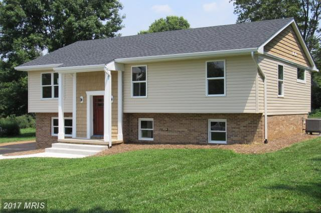 4524 Old National Pike, Middletown, MD 21769 (#FR10018492) :: Ultimate Selling Team