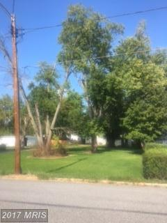 12 Fulton Avenue, Walkersville, MD 21793 (#FR10061543) :: Pearson Smith Realty